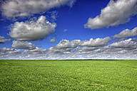 Spain, field and clouds in the Laguna de la Nava region - DSGF01191