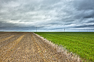 Spain, Province of Zamora, fields under cloudy sky - DSGF01197