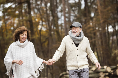 Senior couple walking hand in hand in the woods - HAPF01164