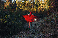Little imp running in forest in forest, carrying lantern - MJF02104