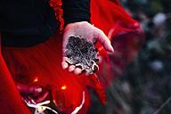 Imp holding frozen oak leave - MJF02110