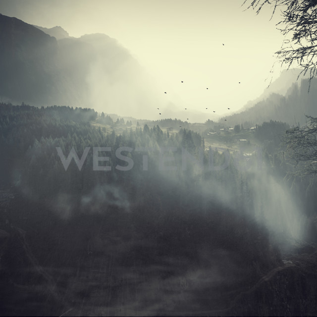 Italy, Lombardy, fog in alpine valley at Chiesa - DWIF00810
