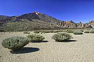 Spain, Tenerife, landscape at Teide National Park - DSGF01295