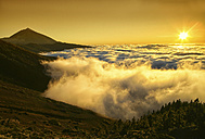Spain, Tenerife, sunset at Teide National Park - DSGF01298