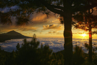Spain, Tenerife, sunset at Teide National Park - DSGF01319