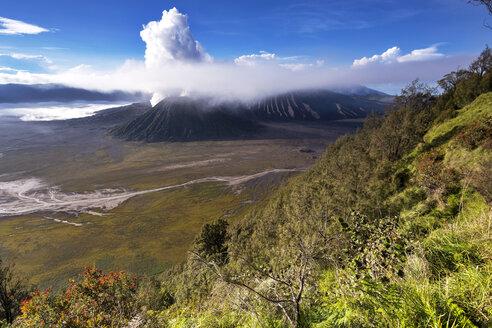 Indonesia, East Java, Bromo Tengger Semeru National Park, Mount Bromo, Mount Semeru - FPF00118