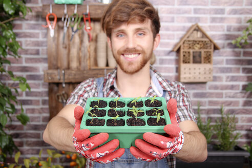 Smiling young gardener holding container with tomato seedlings - RTBF00579
