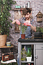 Man arranging daisy pot with garden scissors on terrace - RTBF00582