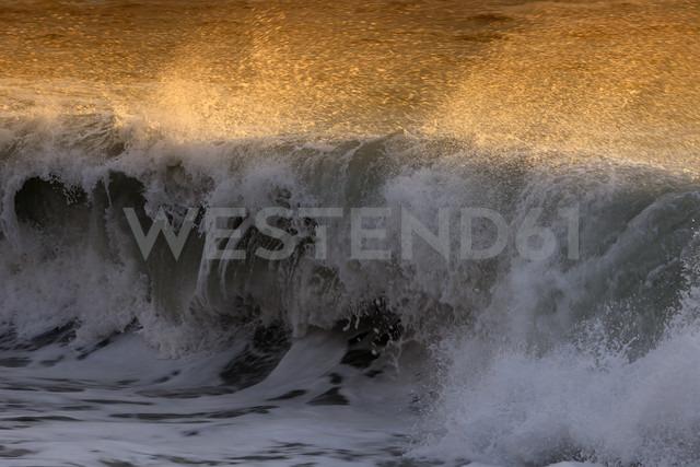 Crashing wave - DSGF01384