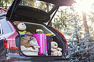 Open car boot packed for family vacation - WEST22336