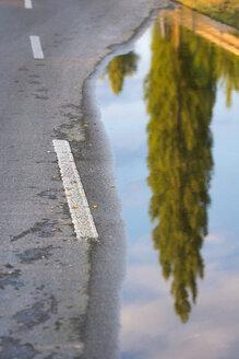 Germany, flooded causeway - SH01927