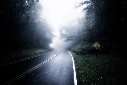 USA, Virginia, Blue Ridge Parkway on rainy and misty day - SMA00636