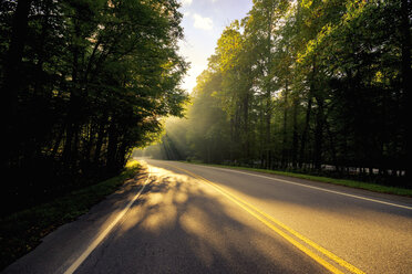 USA, Virginia, empty Blue Ridge Parkway at morning sunlight - SMAF00639