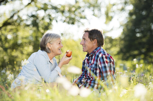 Senior couple relaxing together on a meadow - HAPF01245