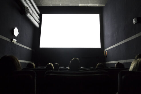 People watching a movie in a cinema - ABZF01636