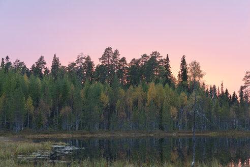 Finland, North Karelia, Kuhmo, Lake in the Taiga at evening twilight - ZCF00456