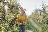 Young woman harvesting apples - KNSF00735