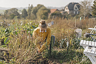 Young woman working in garden - KNSF00762
