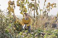 Young woman with book relaxing in cottage garden - KNSF00771