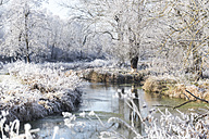 Germany, winter landscape - SARF03093
