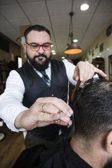Barber cutting man's hair - ABZF01674