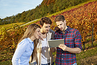 Friends with tablet in a vineyard - FMKF03375