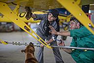 Mechanics with dog in hangar repairing light aircraft - ZEF12149