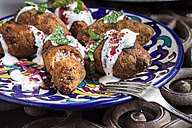 Kibbeh, oriental meat croquettes with yoghurt sauce on plate - SBDF03113