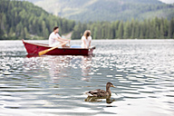 Young couple in rowing boat on the lake - HAPF01281