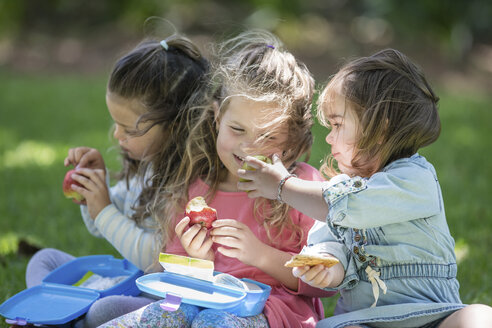 Girls in garden sharing lunch - ZEF12339