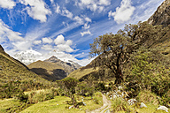 Peru, Andes, Cordillera Blanca, Huascaran National Park, Nevado Huascaran, hiking trail - FOF08516