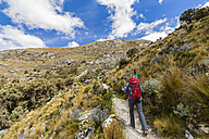 Peru, Andes, Cordillera Blanca, Huascaran National Park, tourist on hiking trail - FOF08522