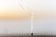 Germany, Baden-Wuerttemberg, Tauberbischofsheim, power pylons in heavy fog - EGBF00166