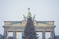 Germany, Berlin, Christmas tree in front of Brandenburg Gate - ASCF00677
