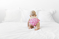 Baby girl crawling on bed, rear view - LITF00487