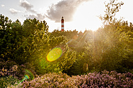 Germany, Amrum, view to light house at backlight - EGBF00176