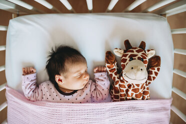 Newborn baby girl sleeping in crib with a plush giraffe - GEMF01379
