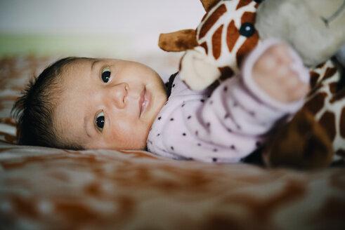 Happy newborn baby girl with a plush giraffe - GEMF01382