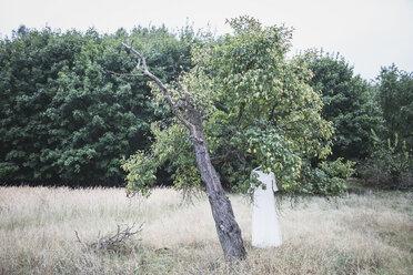Wedding dress hanging in tree - ASCF00686