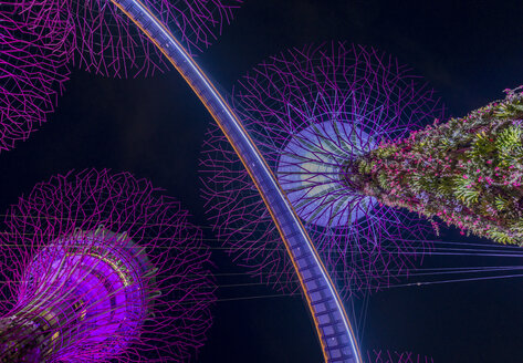 Singapore, lighted Supertrees in Gardens by the Bay at night seen from below - TOV00067