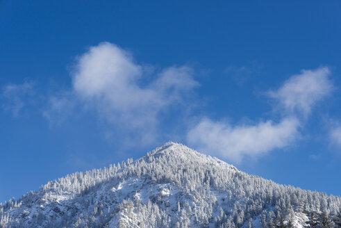 Germany, Allgaeu, summit of Schattenberg in winter - WGF01043