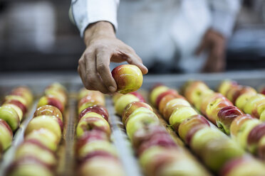 Worker taking apple from conveyor belt in factory - ZEF12418