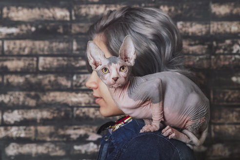 Young woman carrying Sphynx cat on shoulder - RTBF00598