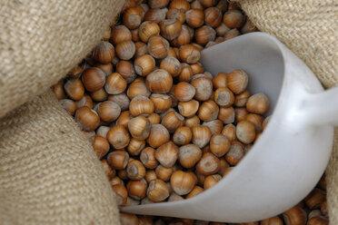 Hazelnuts in gunny bag - LBF01524
