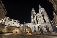 Spain, Burgos, Burgos cathedral at night - DHC00049