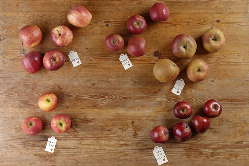 Different sorts of apples on wooden table - LBF01535