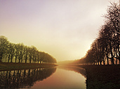 Germany, Cologne, sunshine and fog at Decksteiner Weiher - GWF04945