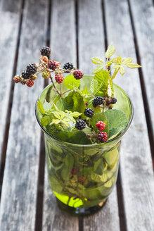 Twigs of wild blackberries in glass vase - GWF04950