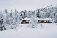 Norway, Oppland, log cabin in winter landscape - JUBF00197