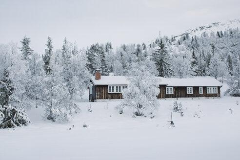 Norway, Oppland, log cabin in winter landscape - JUBF00197
